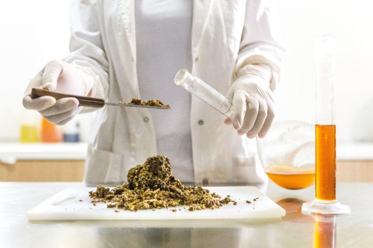 Ce au descoperit cercetătorii despre detoxifiere?