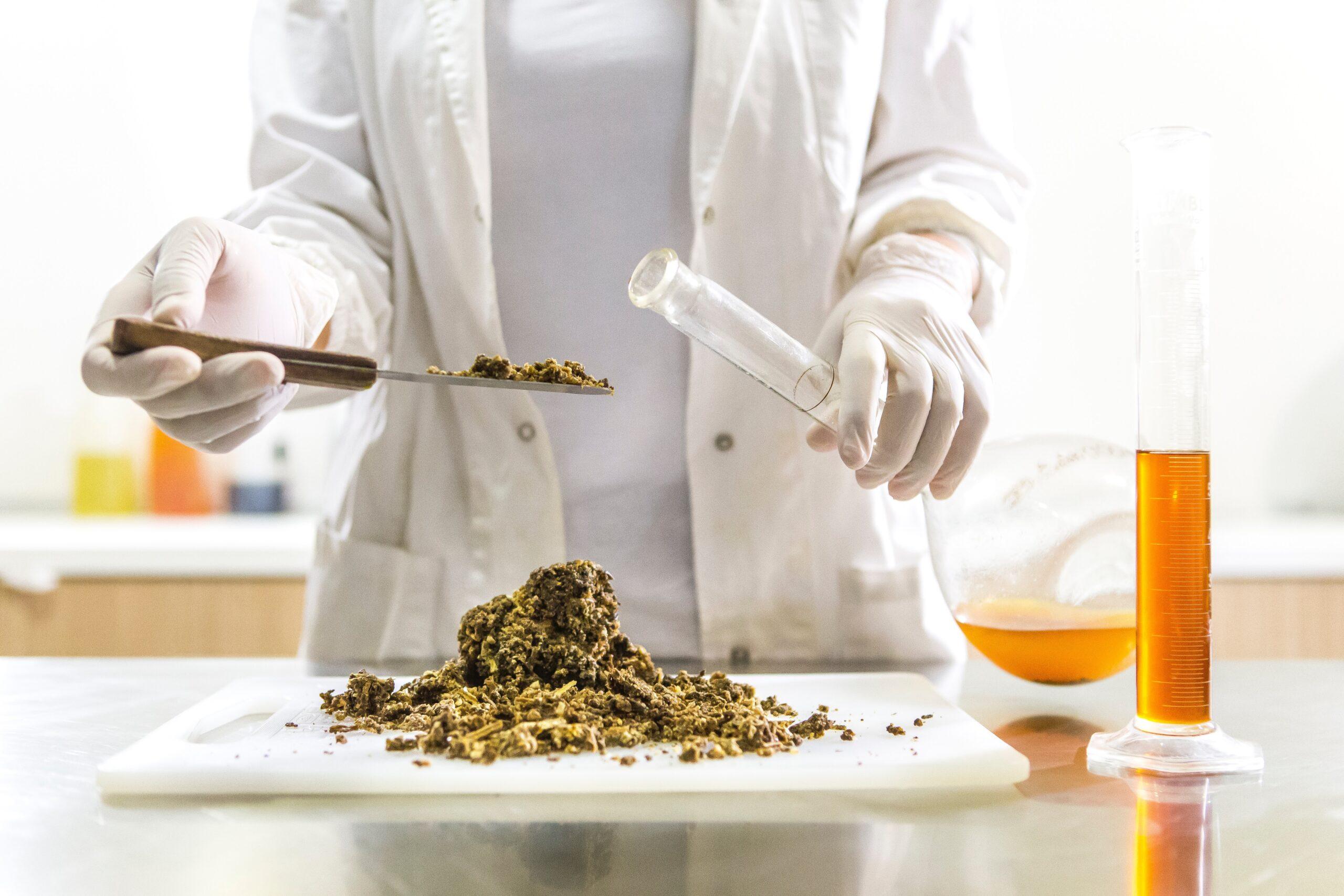 Detoxifierea organismului prin abordări holistice. Sfaturile specialiștilor | Money